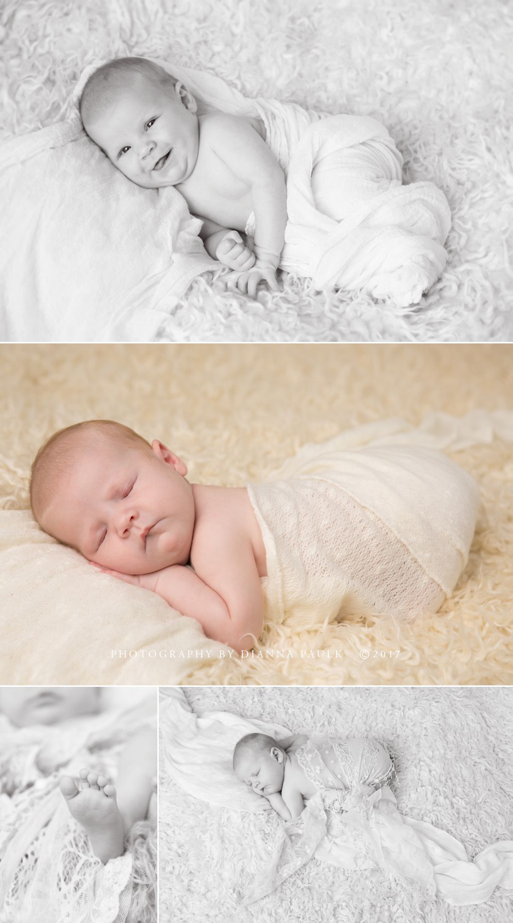 Newborn portrait session; Photography by DiAnna Paulk, a certified professional photographer in Montgomery AL