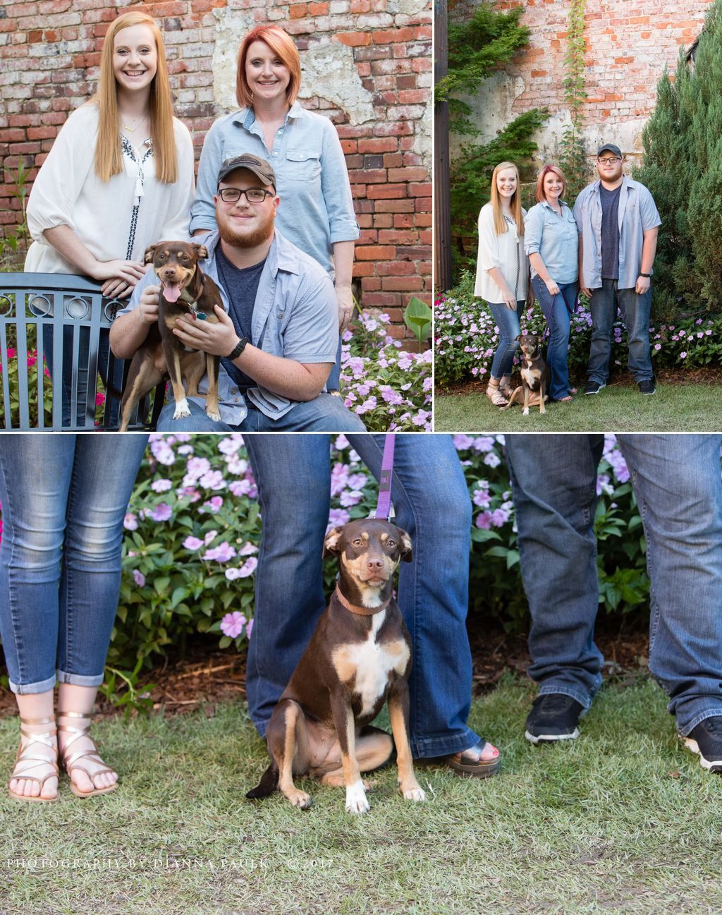 Family portrait session in Prattville AL; Photography by DiAnna Paulk, a certified professional photographer in Montgomery AL
